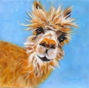 PatShepherd-Colour Alpaca-SCREEN