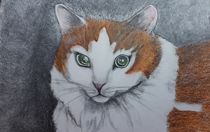 Theresa Cooney-The Cat-SCREEN